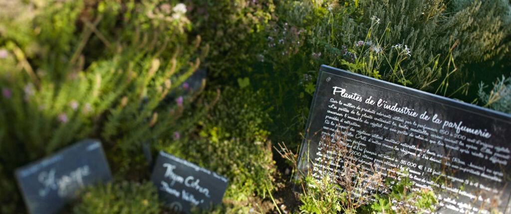Le jardin botanique Yves Rocher à La Gacilly