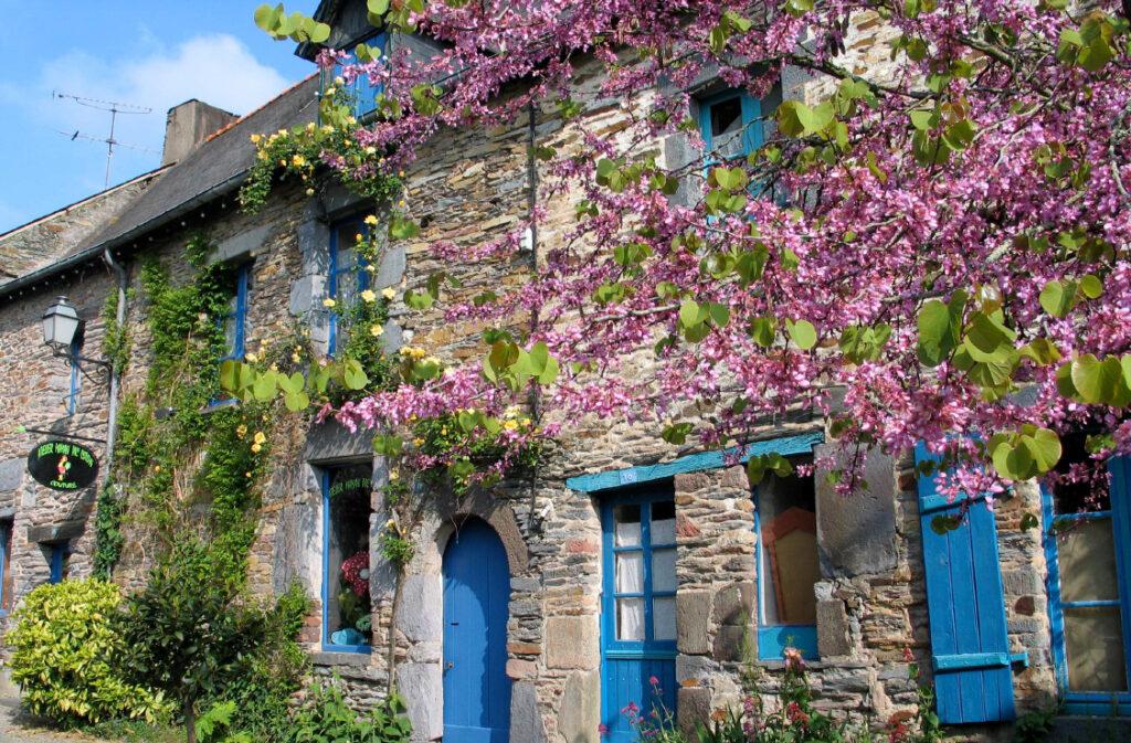 Rue saint vincent en fleur, La Gacilly